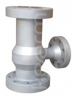 Vertical lift-type check valve with branch piece